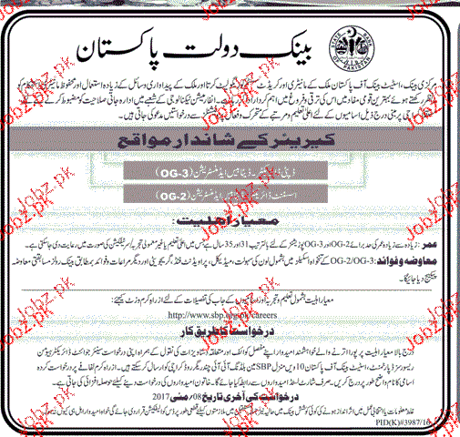 Deputy Director Database and Assistant Director Job in SBP