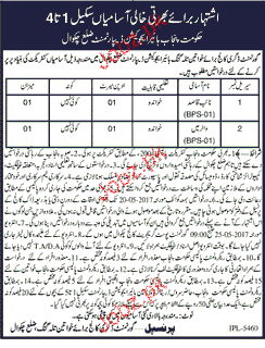 Government Degree College For Women Talagang Jobs