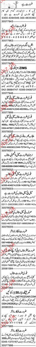 Drivers, Area Managers, Sales Managers Job Opportunity