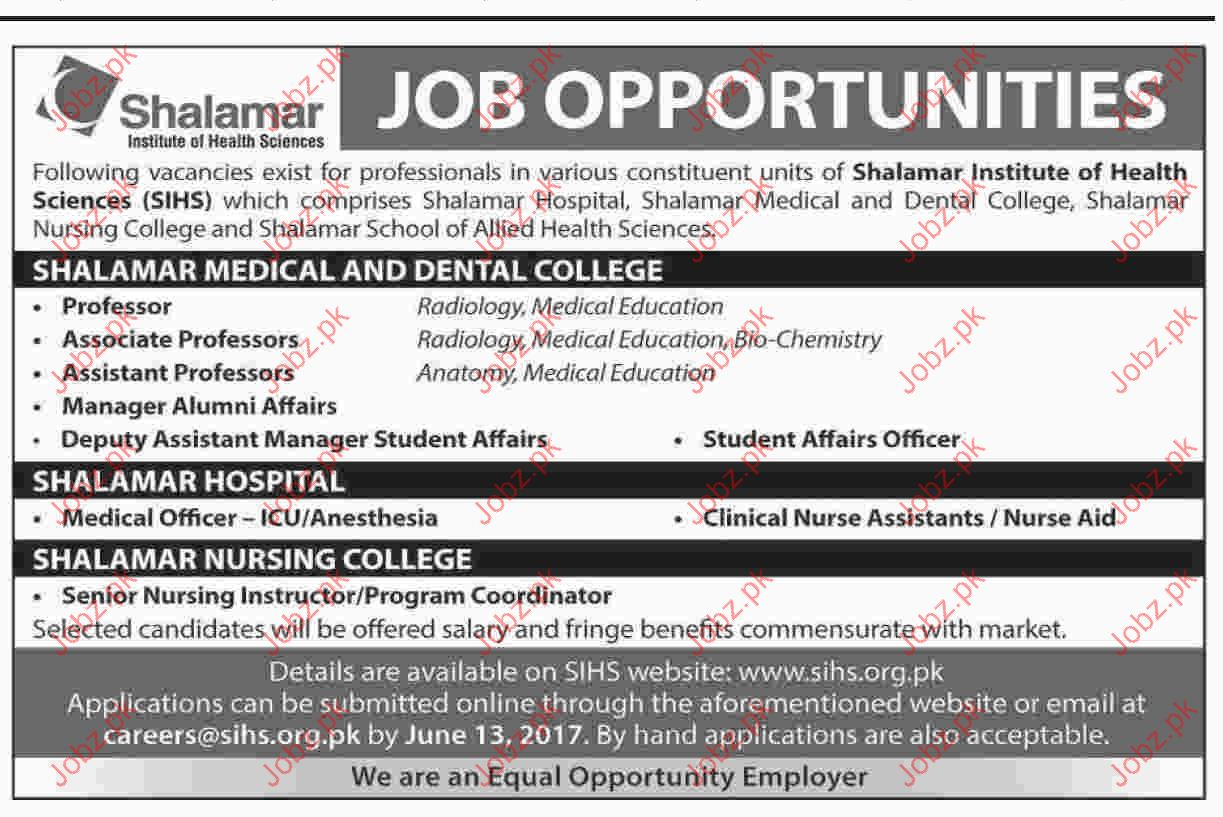Professor Jobs In Shalamar Institute OF Health Sciences