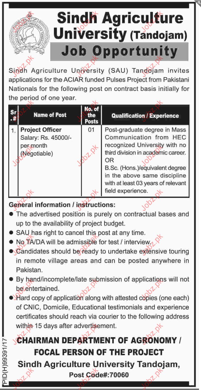 Sindh Agriculture University SAU Jobs 2017