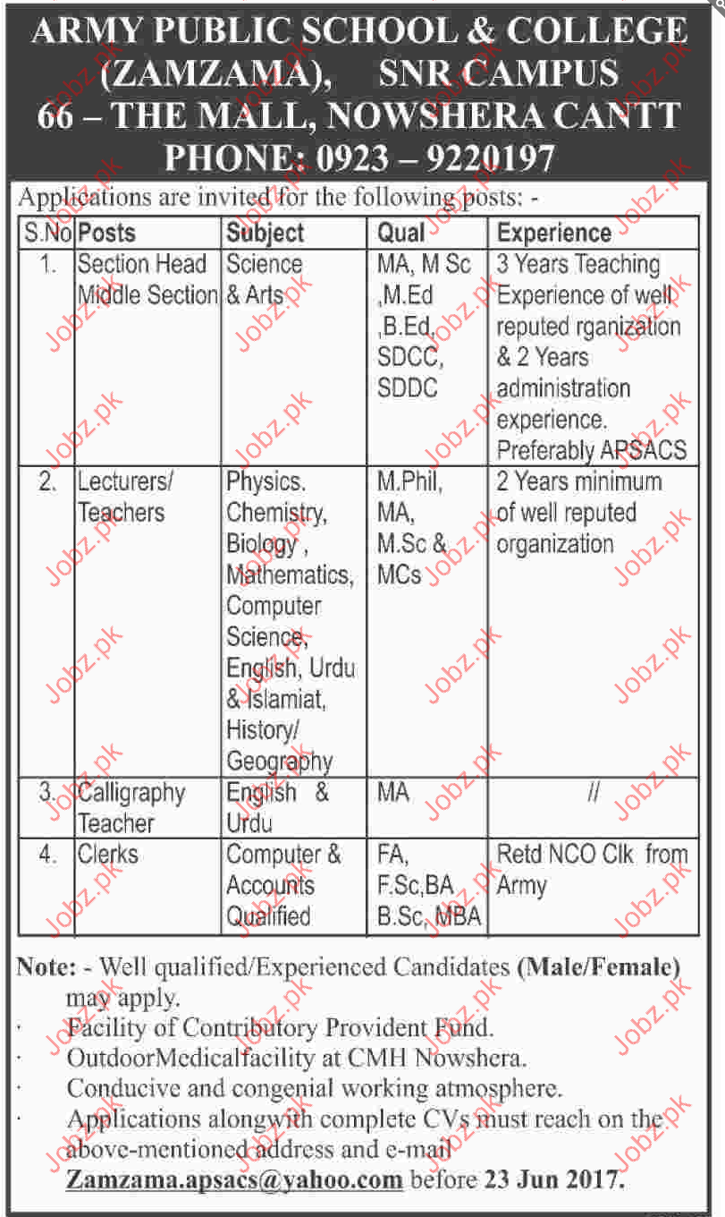 Section Head Middle Section Jobs In Army Public School