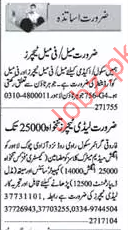 Teaching staff Required for School