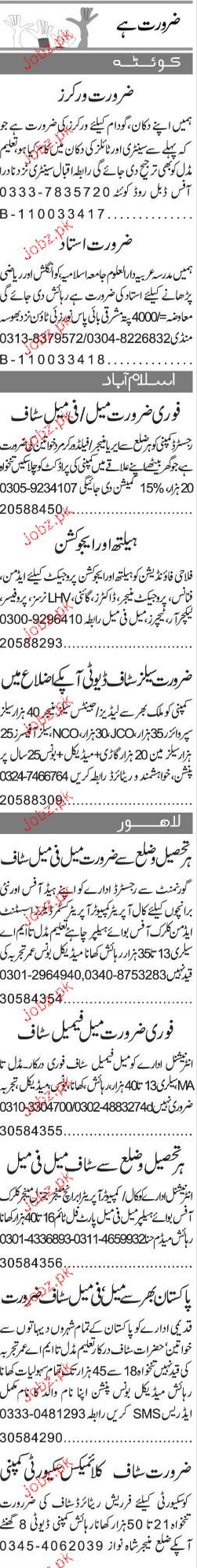Workers, Salesmen, Area Managers Job Opportunity
