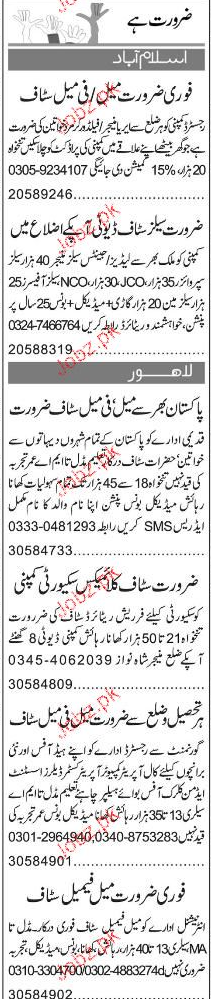 Field Workers, Data Entry Operators Job Opportunity
