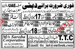 Electricians, Plumbers, Duct Fitters Job Opportunity