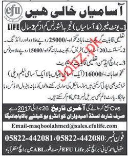 EFU Life Insurance Company AJK Jobs 2021 Job Advertisement ...