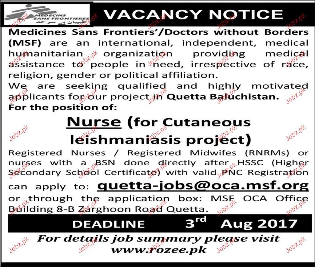 Nurses Job Opportunity