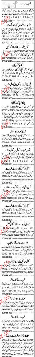 Security Guards, Data Entry Operators Job Opportunity