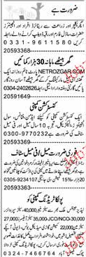 Engineers, Data Entry Operators Job Opportunity