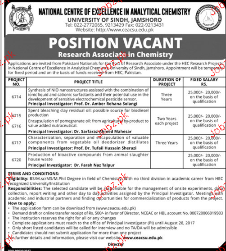 University of Sindh Jamshoro Jobs