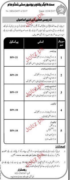 Sindh Agriculture University Tando Jam Jobs