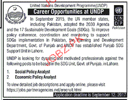 United National Development Program UNDP Jobs