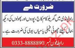 General Workers Required For House