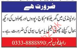 Staff Required For House