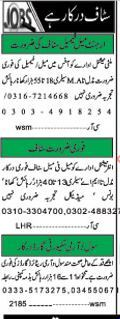 male & Female Staff Required For Private Office