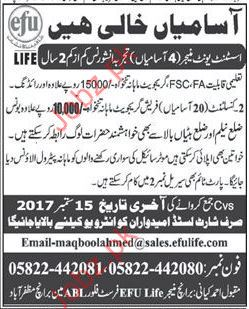Assistant Unit Manager wanted for EFU Life Insurance