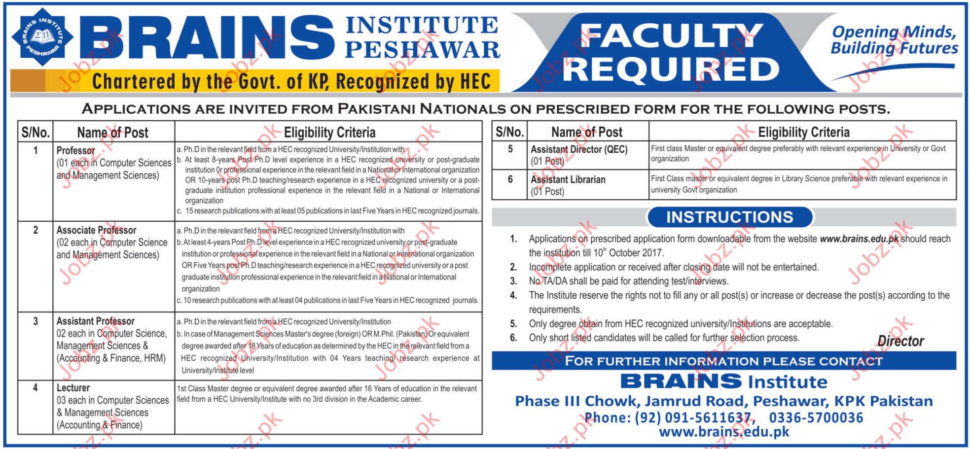 Brains Institute Peshawar Jobs Opportunity