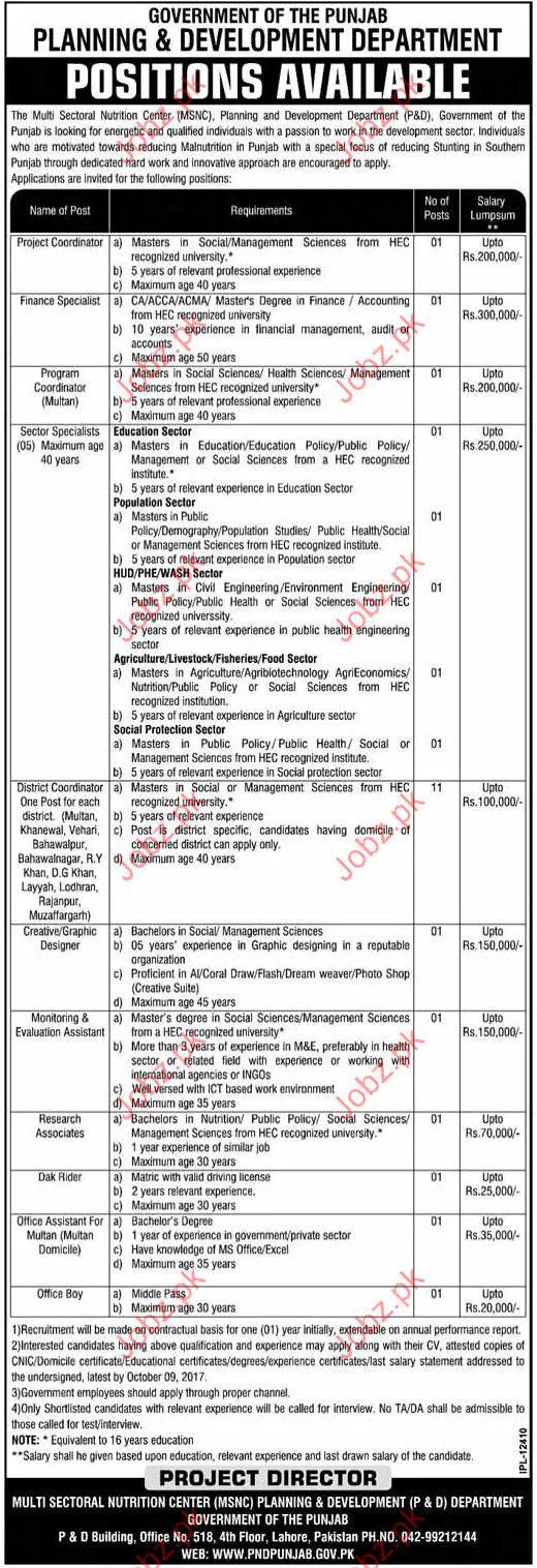 Project Coordinator Job in Planning & Development Department