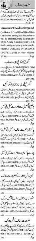 Auditor & Office Staff Jobs in Multan