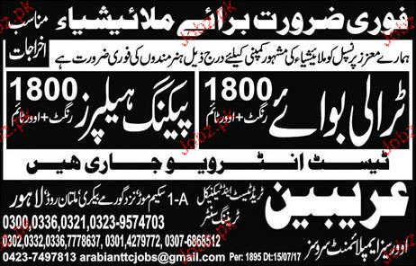 Trolly Boys and Packing Helpers Job Opportunity