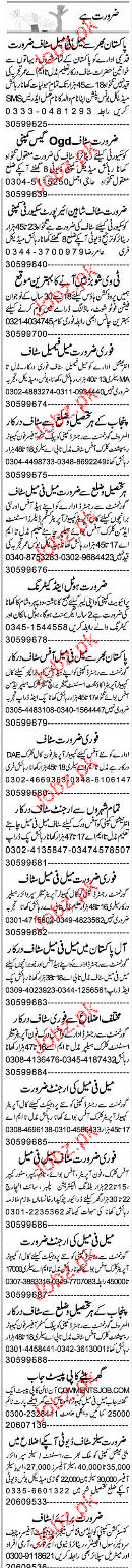 Customer Officers, Assistants, Clerks Job Opportunity