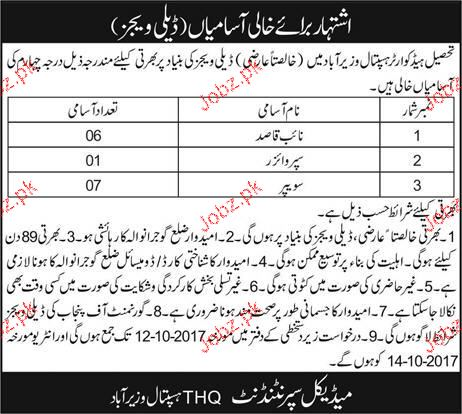 Tehsile Headquarter Hospital THQ Jobs
