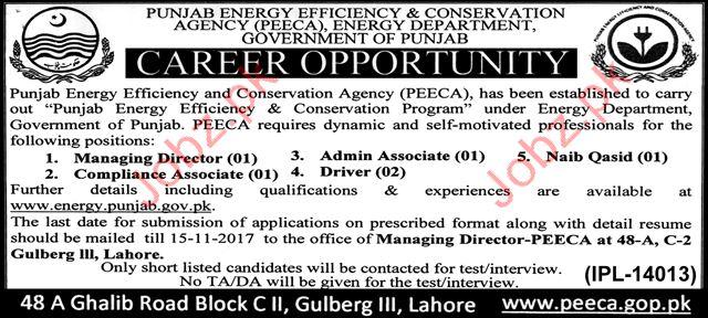 PEECA Jobs 2017 Punjab Energy Department