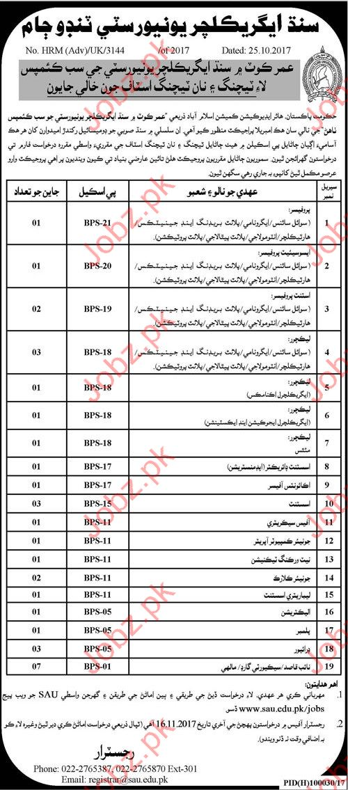 Sindh Agriculture University Jobs SAUT Tandojam