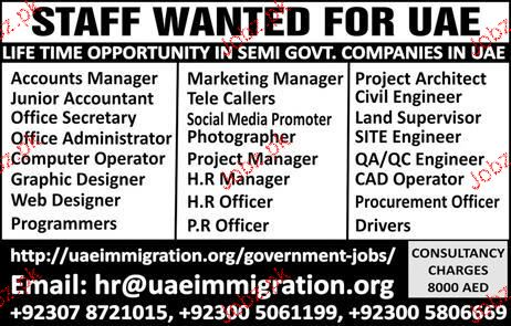 Accounts Manager, Junior Accountant Job Opportunity