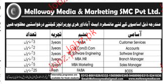 Melloway Media and Marketing SMC Pvt Ltd Jobs