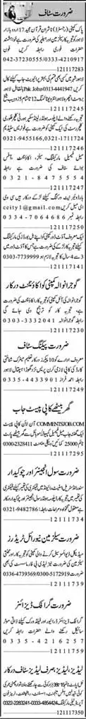 Office Staff, Marketing,IT and Accountant Jobs