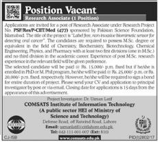 COMSATS Jobs Institute of Information Technology CIIT
