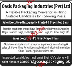 Sales Executives  Job Opportunity