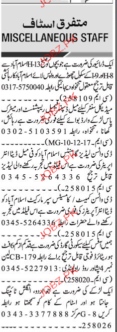 Drivers, Receptionists, Data Entry Operators Job Opportunity
