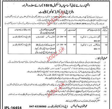 Deputy Director of Education Colleges Jobs