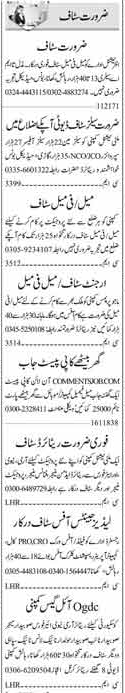 Male & Female Staff Jobs Opportunity 2018