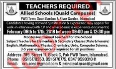 Allied School Jobs for Teacher