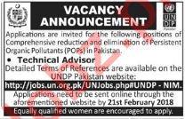 UNDP Jobs 2018 for Technical Advisor