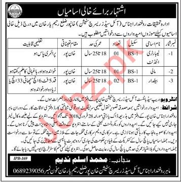 Oil Seeds Research Institute Jobs For Khanpur