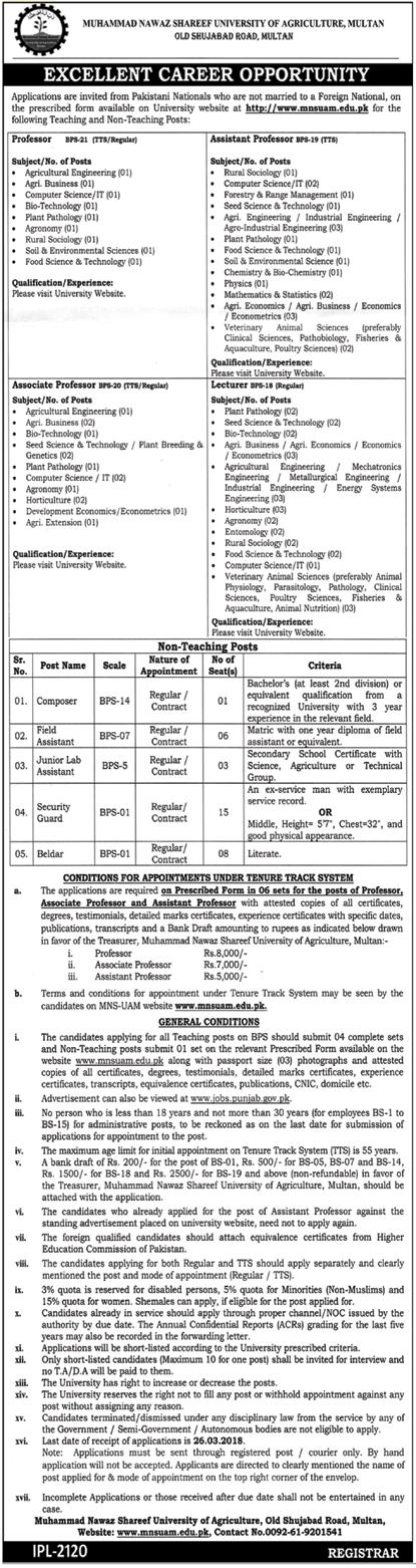 University of Agriculture MNSUAM Multan Jobs 2018