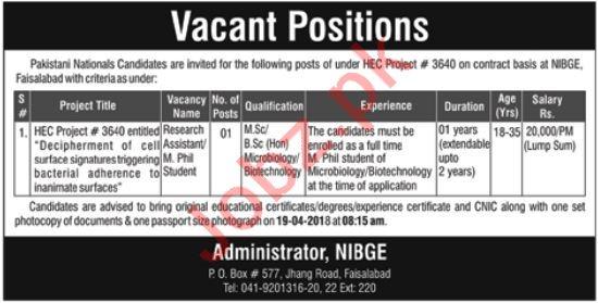 PAEC Pakistan Atomic Energy Commission NIBGE Faisalabad Jobs