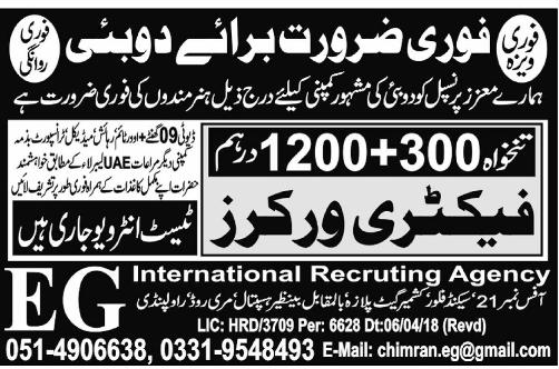 Factory Packing Workers Job in Dubai