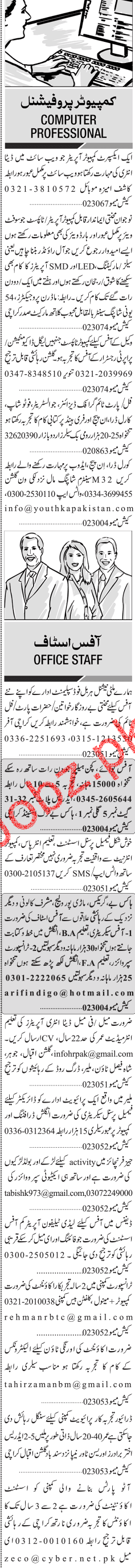 Sunday Jang Classified Computer Professional Jobs