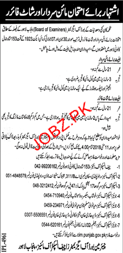 Mines and Minerals Department Government of the Punjab Jobs