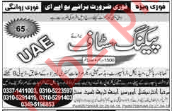 Packing Staff Jobs Opportunity in UAE