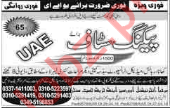 Packing Staff Jobs Career Opportunity