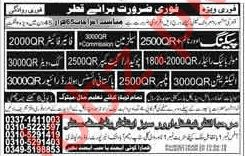 Salesman, Fire Fighter, Cook, Driver, Electrician Jobs 2018