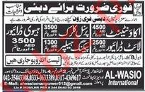 Jobs at Al Wasio International