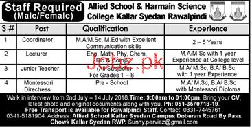Allied School & Harmain Science Collee Kallar Syedan Jobs
